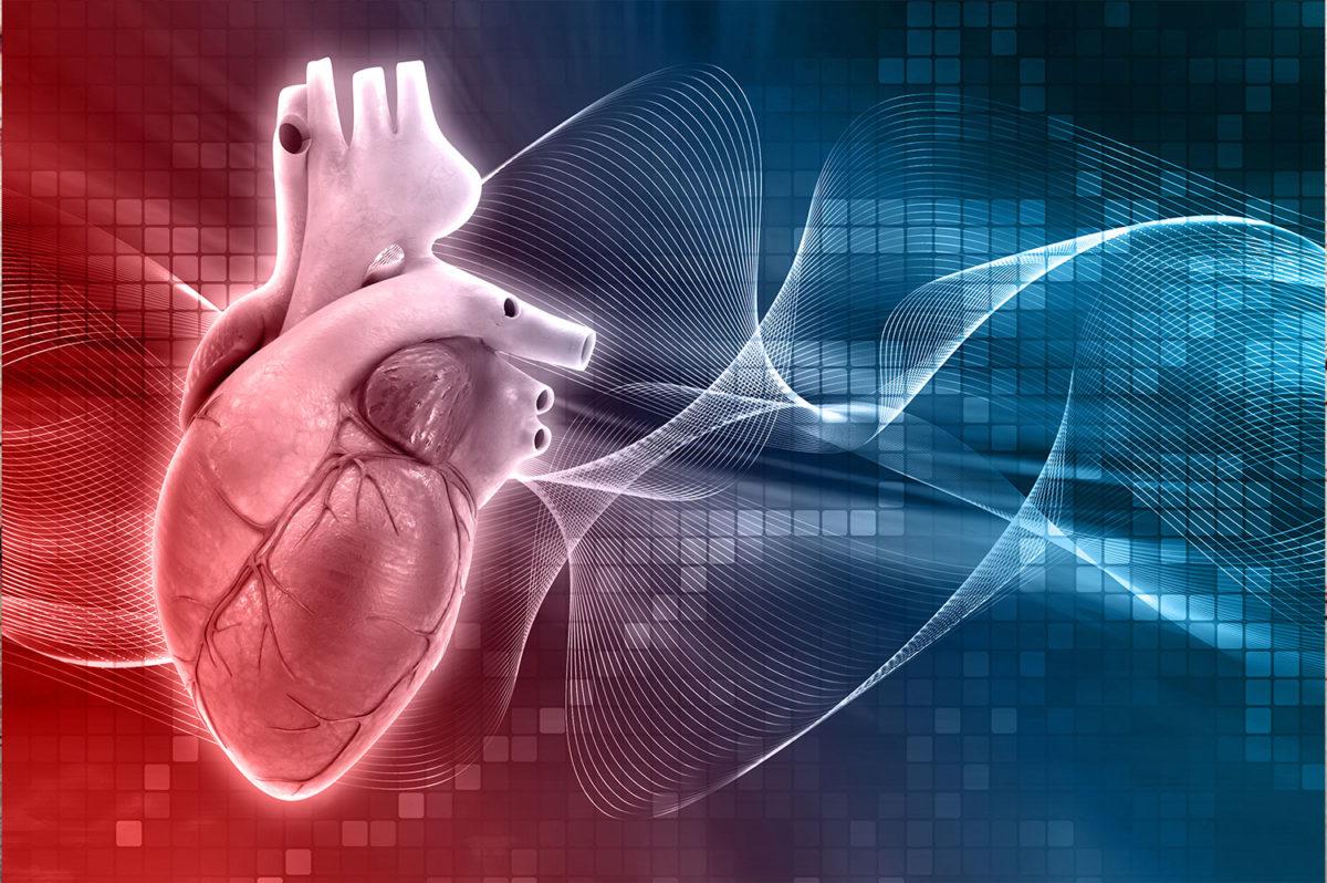 especialista_cardiologia